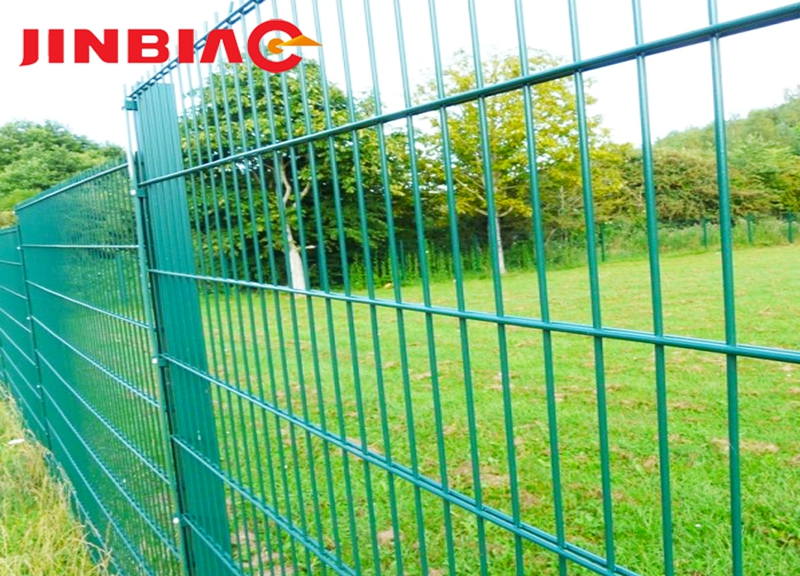 High quality cheap Double wire painted green double wire mesh fence--jinbiao